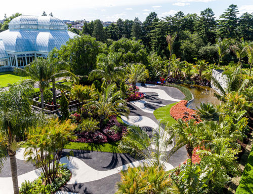 NEW YORK'S BOTANICAL GARDEN SUMMER EXHIBITION: ROBERTO BURLE MARX